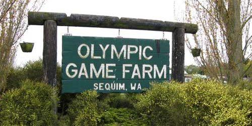 sequim-game-farm-11-e14650909891581